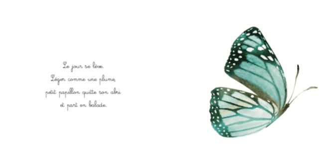 exemple pages la balade du papillon